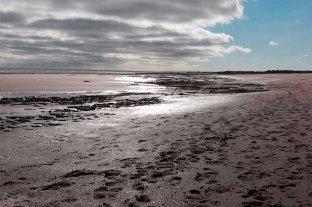 Turistas hallaron restos fósiles en la playa de Monte Hermoso