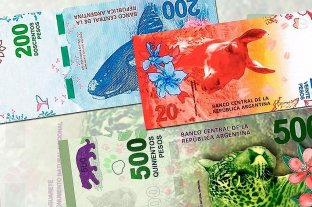 """El reemplazo de los billetes será """"progresivo"""" y """"sin costos extra"""""""