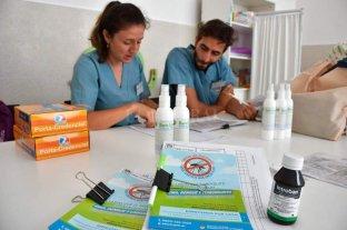 Dengue: se lanzó el Operativo de Descacharrado Asistido