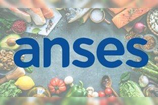 La ANSES puso a disposición base de datos y delegaciones para instrumentar Tarjeta AlimentAR