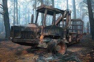 Las lluvias dieron un poco de aire a los incendios en Australia
