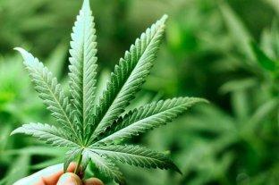 Operativo policial por un paciente que quiso fumar marihuana