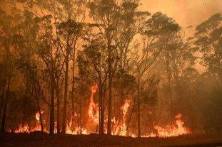 Ya son 29 las victimas fatales de los incendios en Australia