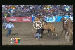 Video: Un jinete de Entre Ríos sufrió un traumatismo de cráneo en el festival Jesús María