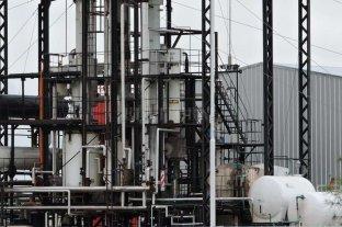 El biocombustible trae otro desafío a Perotti