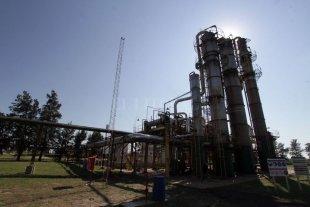 """""""La Liga Bioenergética"""" teme que el lobby pretrolero ponga en riesgo la actividad"""