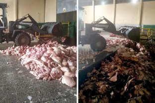 Transportaba ilegalmente más de 2 toneladas de carne de cerdo