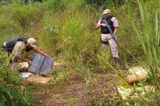 Incautaron más de 800 kilos de marihuana en Misiones