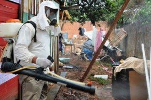 Se confirmaron cuatro casos de dengue autóctono en Paraná
