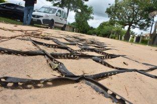En Colastiné Norte reclaman que las  geoceldas están rotas y al descubierto - A la vista. Por la falta de mantenimiento, las geoceldas están sin cubrir y en algunos tramos empezaron a romperse las mallas.  -
