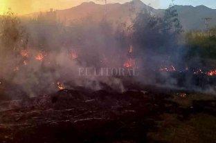 Grave incendio en un cañaveral de Venezuela deja al menos 10 muertos, entre ellos 7 niños