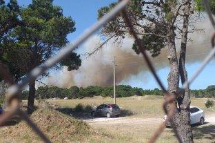 Se desató un incendio en el bosque de Villa Gesell