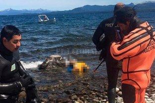 Hallaron muerto el turista inglés que cayó al lago Nahuel Huapi