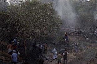 El incendio en el bosque de Villa Gesell fue provocado por el choque de dos cables de media tensión