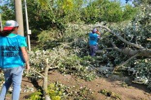 Un fuerte tornado azotó al sur de Tucumán