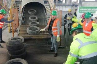 """Mendoza """"erradicó"""" más de 370 toneladas de neumáticos en desuso"""