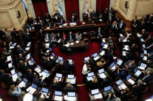 El Senado trata el proyecto para renegociar la deuda