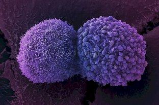 Cáncer: se completaron los genomas de 38 tipos de tumores