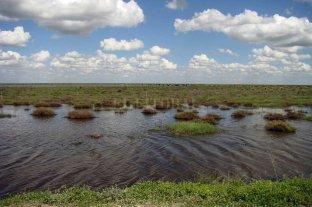 Trazan un plan hídrico regional