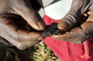 Mutilación genital femenina: qué es, cuáles son sus tipos y dónde se practica