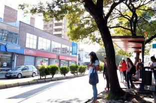 Colectivos: UTA confirmó medidas de fuerza para este viernes en Paraná
