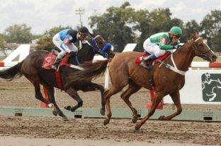 Fín de semana con carreras en Palermo, San Isidro, La Plata y San Luis
