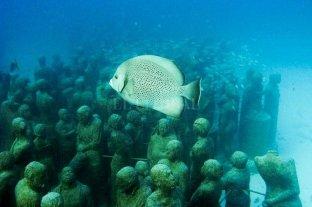 Estudio revela deterioro de salud del arrecife centroamericano