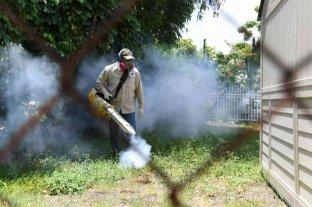 Se registraron siete nuevos casos de dengue en Paraná -  -