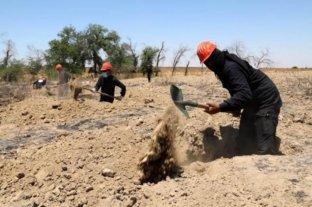 El Ejército sirio encuentra una fosa común con 70 cadáveres en un antiguo bastión rebelde