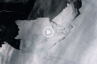 Un iceberg del tamaño de Buenos Aires se desprendió del Glaciar Pine Island