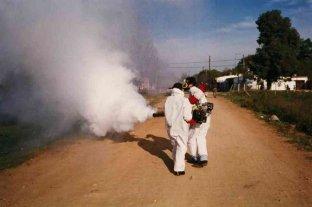 Se elevan a 13  los casos casos de dengue en Jujuy