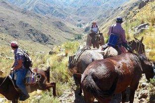 Capilla del Monte: operativo con perros y mulas para bajar el cadáver