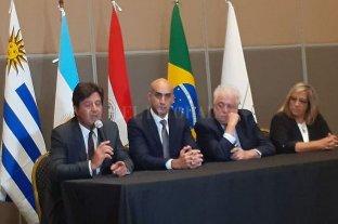 """Dengue: ministros de Salud del Mercosur acordaron medidas de """"acción rápida"""" -  -"""