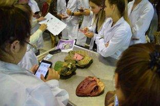 """Científicos de la FCV desarrollaron una App educativa: """"directa al corazón"""""""