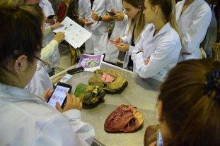 Una App de realidad aumentada para estudiar el corazón bovino