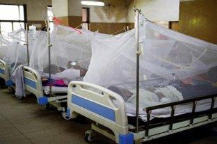 Subieron a 20 las muertes por dengue en Paraguay