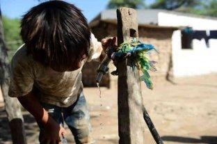 La Cruz Roja Argentina brindará 2 millones de litros de agua potable a Salta
