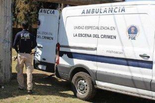Encuentran 24 cuerpos en una fosa clandestina en Michoacán