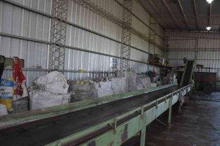 Pilar genera más de 300 mil pesos por venta de residuos