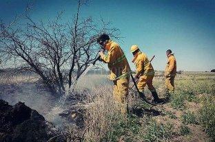 Quiso prender fuego a un nido de cotorras pero incendió 200 hectáreas