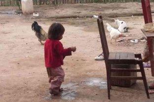 Una niña wichi murió por una infección respiratoria y desnutrición en Salta -  -