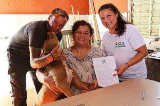Adoptaron a Bruno, el perro abandonado en un vagón de tren