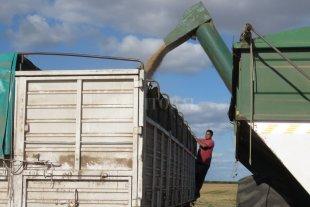 El campo en alerta por un posible 3% de aumento a las retenciones de la soja -  -