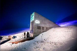 Una bóveda en el Ártico alberga semillas de todas las especies vegetales