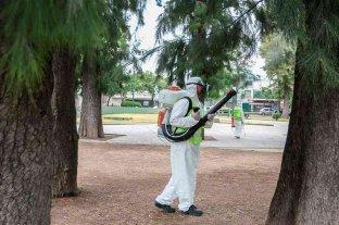 Ya son 13 los casos confirmados de dengue en La Plata