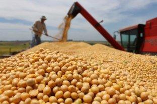 Recortaron estimación de producción de la soja