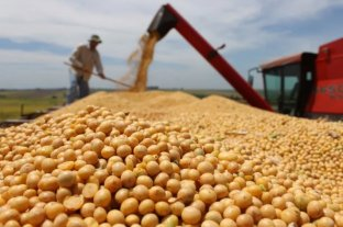 La Casa Rosada cerró el registro de exportaciones