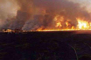 Un incendio consumió más de 400 hectáreas de pastizales en Baradero