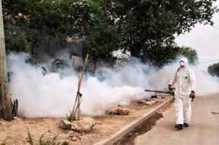 Más de 400 casos de dengue en Corrientes