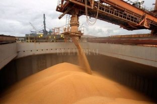 Empresarios denuncian que les impiden cargar granos en puertos -  -